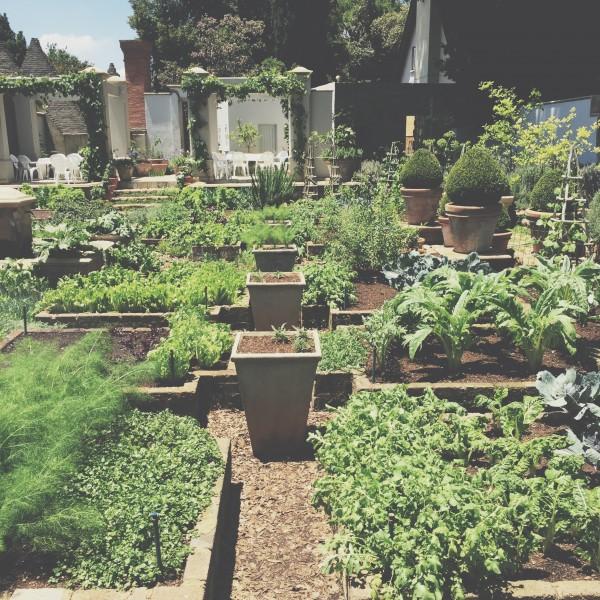Susan Greig Garden
