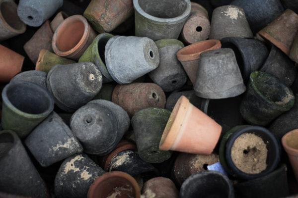Brandslut Dirt Therapy Plettenberg Bay Blog 15