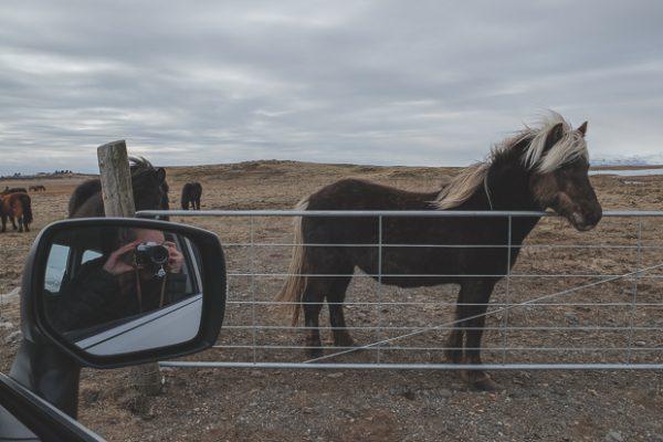 Brandslut An Adventure in Iceland 33 1