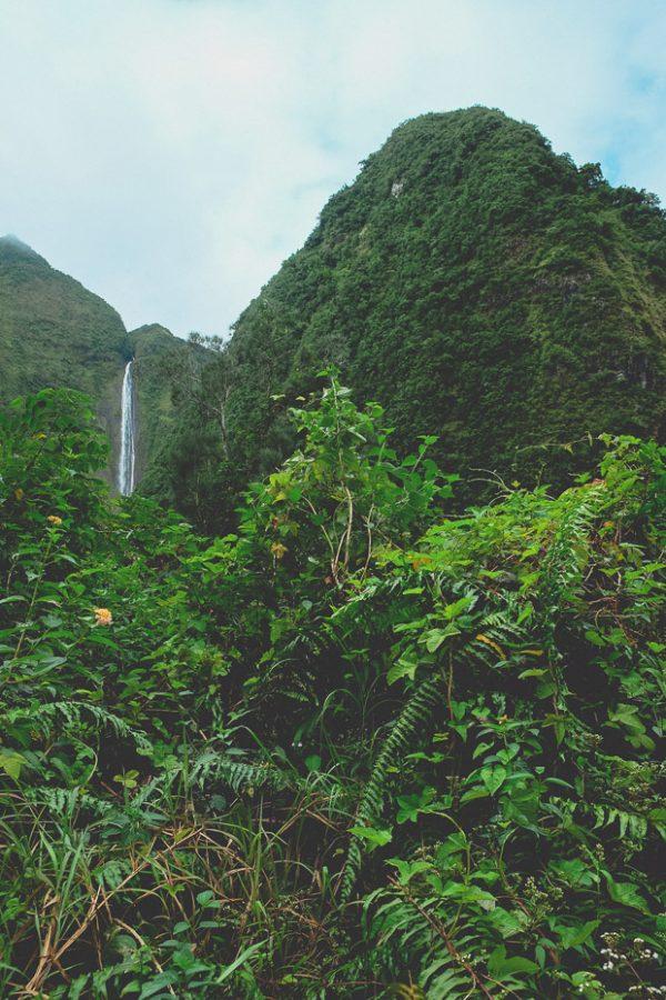 Brandslut Reunion Island 10 Reasons To Go To Reunion 29 1