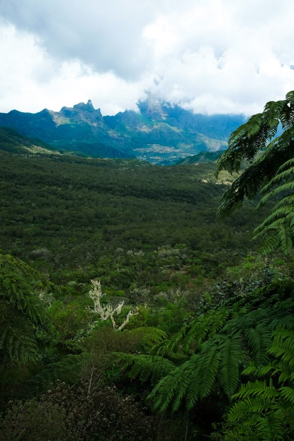 Brandslut Reunion Island 10 Reasons To Go To Reunion 45 1